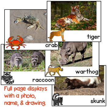 NGSS Animal Adaptation and Traits Help them Survive Book and Writing Lapbook