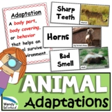 Animal Adaptation Photo Lesson for Structure, Function, Inheritance of Traits