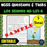 NGSS Assessment Tasks and Test Questions MS-LS1-6 Role of Photosynthesis