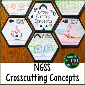 NGSS CCC: Room Decor, Interactive Bulletin Board: Honeycomb Pattern