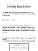 NGSS Cellular Respiration Lesson and Quiz
