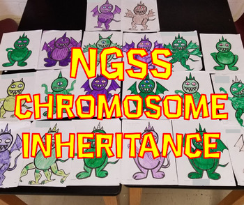 NGSS Chromosome Inheritance and Mutations Lab (MS-LS3-1 & MS-LS3-2)