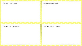 NGSS Food Chain Review