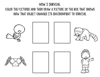 NGSS Free Worksheets (K-LS1-1)
