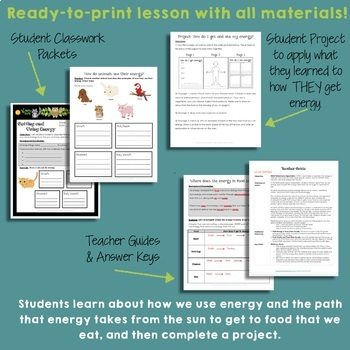 NGSS How Do You Use Your Energy? (5-PS3-1)