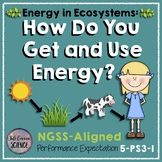 NGSS 5th Grade How Do You Get and Use Your Energy? (5-PS3-1)