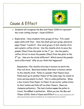 NGSS ICON Cause and Effect Lesson Plan