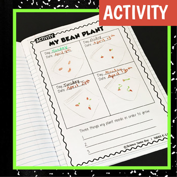 NGSS K-LS1-1 Activity & Interactive Notebook Pages