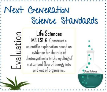 NGSS Life Science LS1-6 Photosynthesis Cycling of Matter and Energy