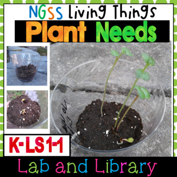 NGSS Living Things: What Plants Need (K-LS1-1)