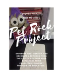 NGSS MS-ESS2-1 Pet Rock Picture Book Project