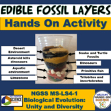 NGSS MS-LS4-1 Edible Fossil Layers Lab Evidence of Common Ancestry and Diversity