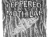 NGSS Peppered Moth Lab & Natural Selection MS-LS4-4 & MS-LS4-6