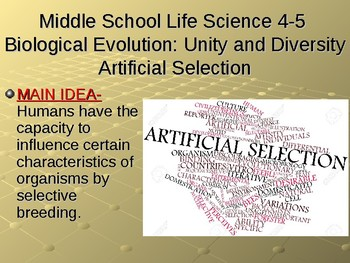 NGSS MS-LS4-5 Biological Evolution: Artificial Selection