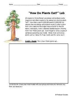 Photosynthesis Lab NGSS 5th Grade Middle School Evidence Lab 5-LS1-1 MS-LS1-6
