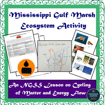 NGSS Modeling the Cycling of Matter And Flow of Energy MS-LS2-3