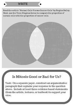 NGSS Mitosis Activity No. 2