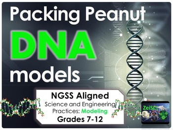 NGSS Packing Peanut DNA Models