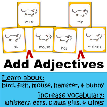 Animal Traits and Adaptations:  Pet Scrambled Sentences