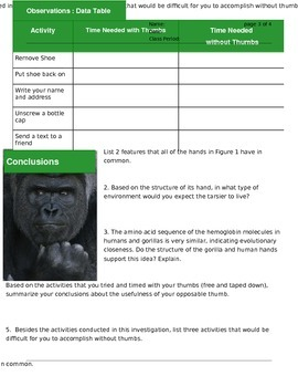 NGSS: Primate Hand Adaptation