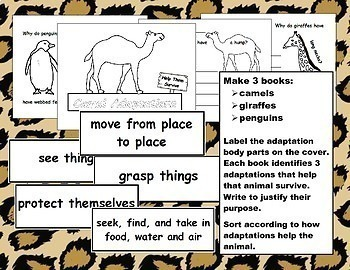 NGSS Structure and Function: Adaptations Help Animals Survive
