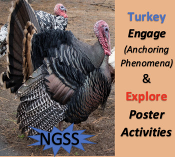 NGSS Turkey Engage (Anchoring Phenomena) and Explore (Poster) Activities