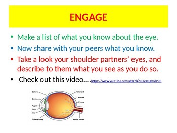 NGSS Unit 3 Lesson 1: How the eye works