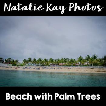 NK Photos - Beach with Palm Trees