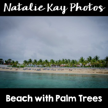 NK Photos - Beach with Palm Trees