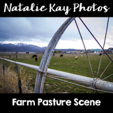 NK Photos - Farm Pasture Scene