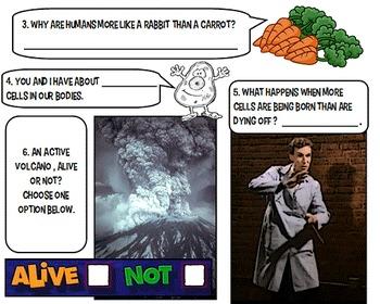 Bill Nye Cells NO PREP Worksheet PowerPoint Key Jr High bi