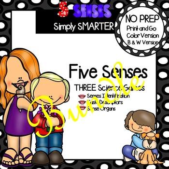 NO PREP Five Senses Games Bundle
