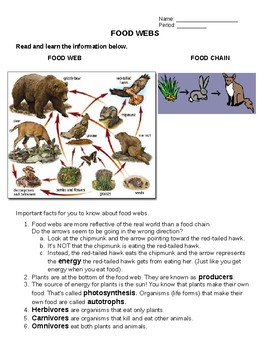 NO PREP Need a Lesson Quick! Series - Food Chains - bonus extended activity