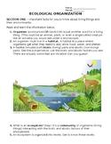 NO PREP Need a Lesson Quick! Series: Ecological Organizati