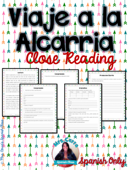 NO PREP - Spanish Close reading and Grammar Assessment {Vi