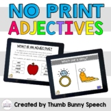 NO PRINT Adjectives: Describing - Distance Learning