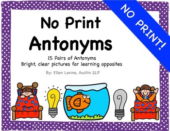 NO PRINT Antonym Opposites