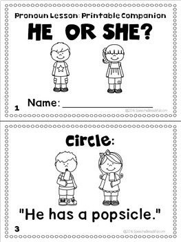 photo about Printable Mini Book referred to as NO PRINT - He or She? - Pronoun Mini-Lesson with Printable Mini-Ebook