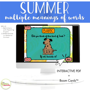NO PRINT Summer Multiple Meaning Words