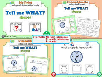 NO PRINT Tell me What? Shapes *Adapted Interactive Book* 3 FORMATS