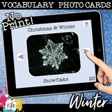 NO PRINT Winter & Christmas Vocabulary Flashcards (Distance Learning)