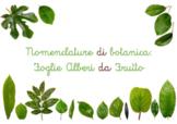NOMENCLATURE BOTANICA FOGLIE E ALBERI DA FRUTTO (Leaves and Fruit Trees)