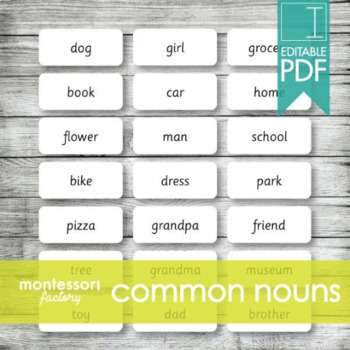 NOUNS | Montessori Cards | Educational Material | Editable PDF (120 cards)