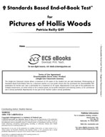 Standards Based End-of-Book Test for Pictures of Hollis Woods