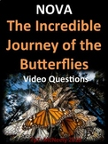 NOVA: The Incredible Journey of the Butterflies Video Questions