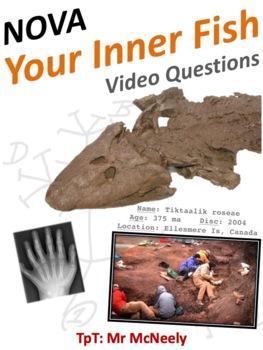 NOVA: Your Inner Fish Video Questions