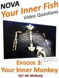 NOVA: Your Inner Fish Episode 3: Your Inner Monkey Video Questions