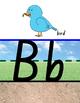NSW Foundation Alphabet Display - Sky/Grass/Dirt