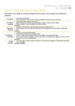 NSW Numeracy Continuum FULLY EDITABLE