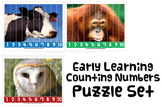 NUMBER SEQUENCING MATH PUZZLE ACTIVITY autism speech therapy aba counting pdf